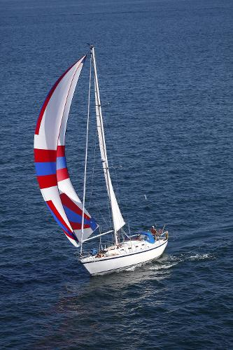 Canadian Sailcraft 36