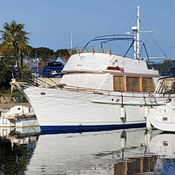 Island Gypsy Island Gypsy 44