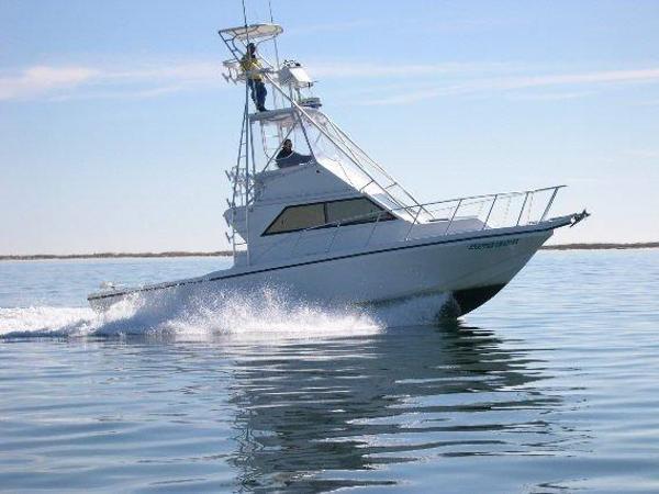 Sea Hawk SPORT FISH
