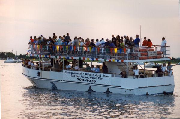 Yank Marine Environmental Tour Boat Photo 2