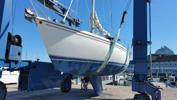 Catalina 36 IN THE SLINGS