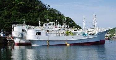 16.5m x 9.89m FRP Tuna Fishing Vessel /Located in Japan