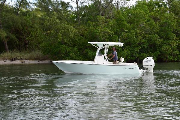 Sea Born LX 22 CC