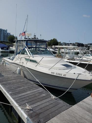Wellcraft Coastal 260 Starboard Side
