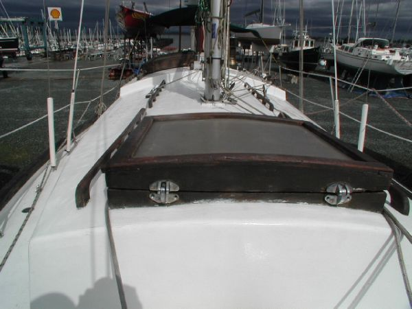 Reversible Dogs on Forward hatch