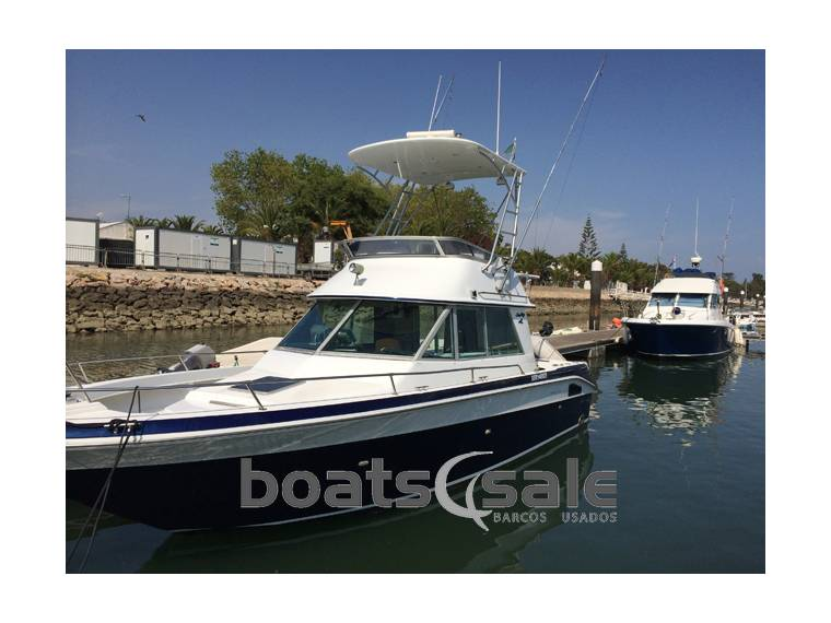 Sea Ray Sea Ray 290 Sport Flybridge