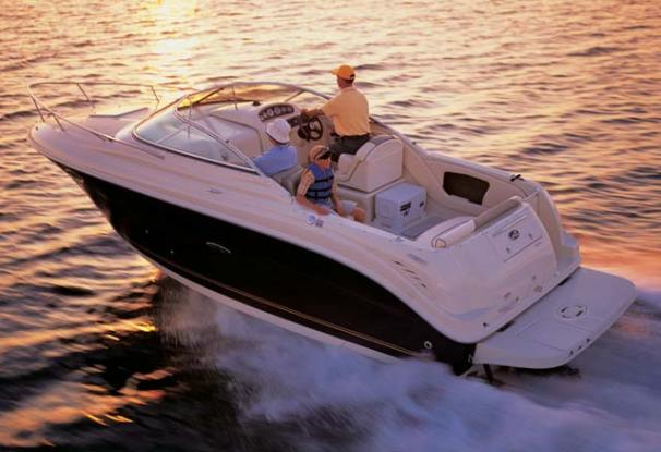 Sea Ray 250 Amberjack Manufacturer Provided Image