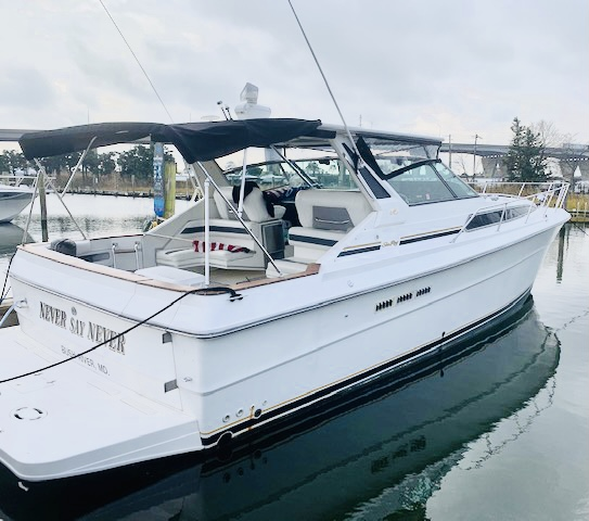 Sea Ray 39 1989 Sea Ray 39 Express Cruiser