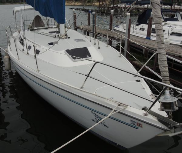 Catalina 36 Stb. Bow