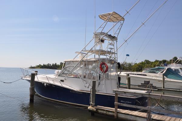 Atlantic 34 Express Fish