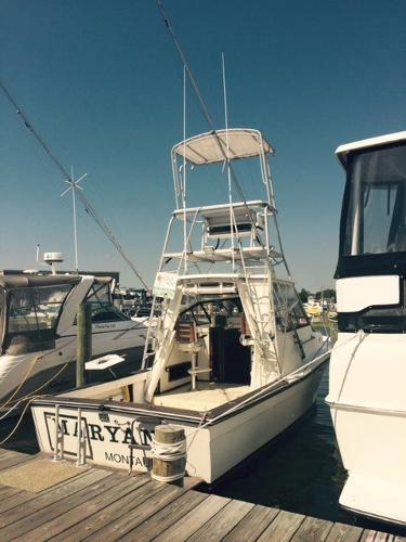 Topaz 29 Express Sportfish