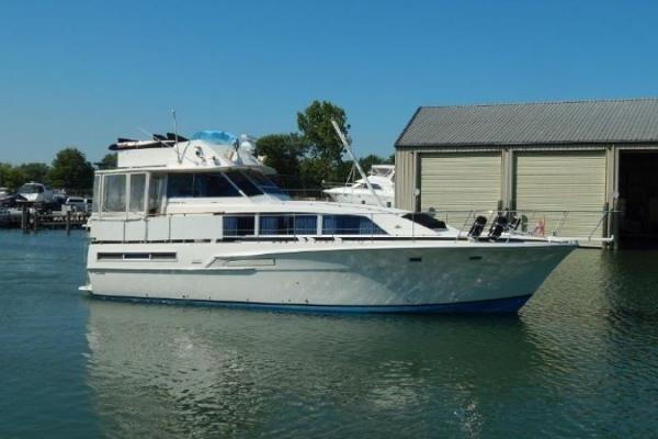 Bertram 46 Motor Yacht Profile