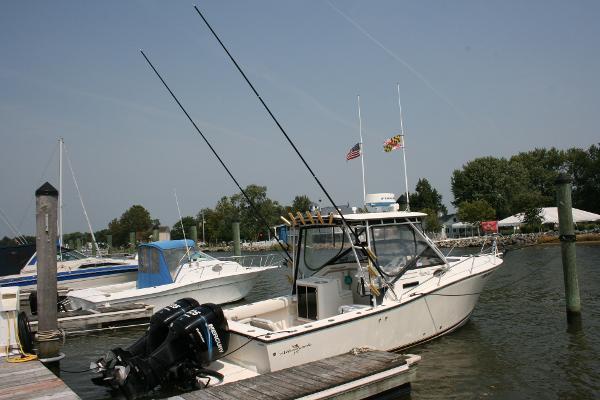 Albemarle 265 Express Fisherman