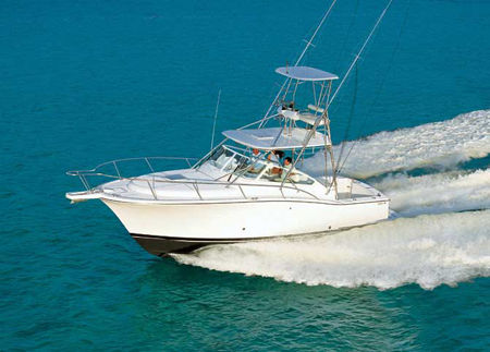 Luhrs 31 Open Photo 1