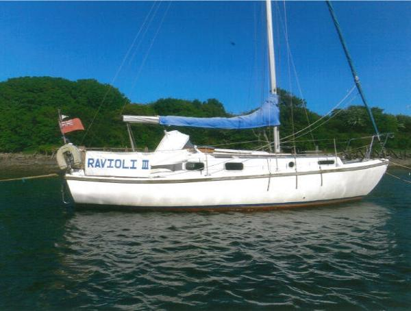 Atlanta Marine Viking 8.5