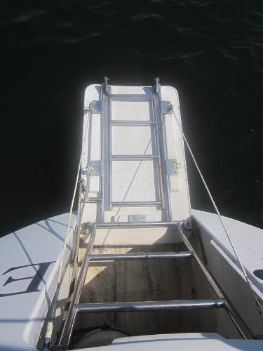 Lacoste 42 Pryde Fold-down swim platform and ladder