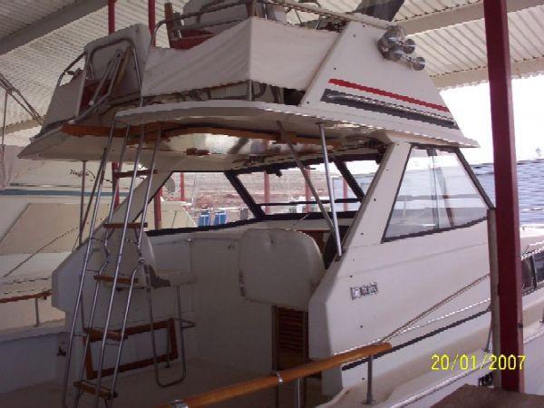 Trojan Sea Voyager Cruiser