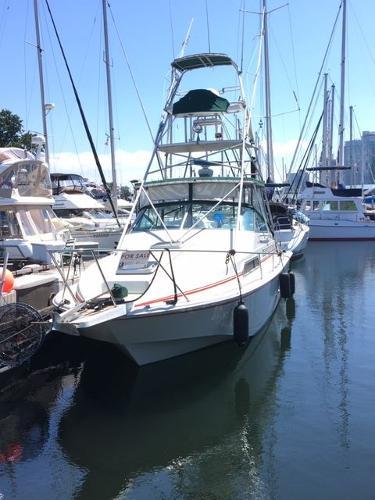 Boston Whaler Sport