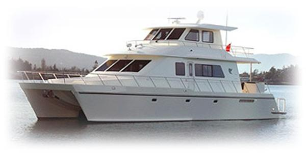 Wendon 601 Sistership 601 Cat Profile