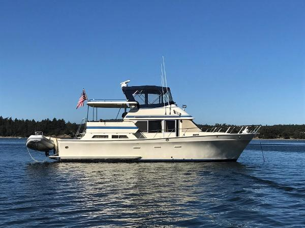 Performance Trawler Cheer Men CPMY 42