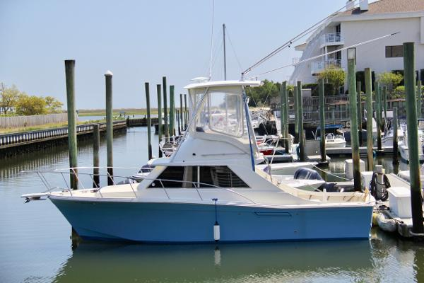 Custom Carolina Convertible Sportfish