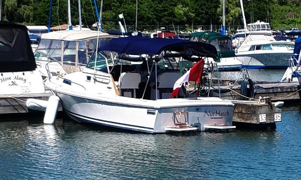 Limestone 24 Express Cruiser