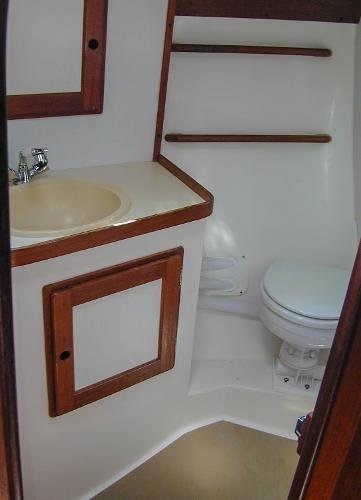 Spacious, Functional Head/Shower Compartment