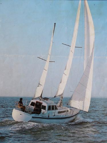 Custom GIB SEA 33 MS GIB SEA 33 MS