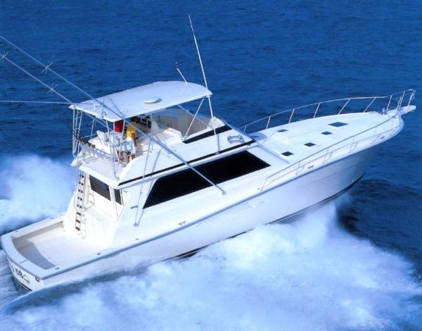 Viking 58 Convertible Photo 1