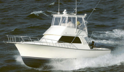 Henriques Sportfish Photo 1