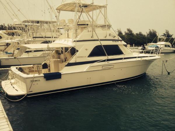 Bertram 37 Sport Fisherman