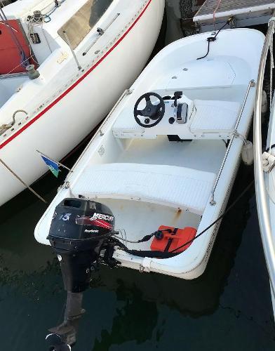 Boston Whaler 110 Tender