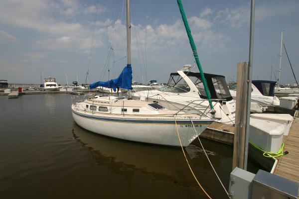 Newport 31