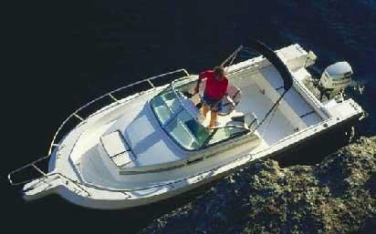 White Shark 236C Manufacturer Provided Image: 236C View from Above