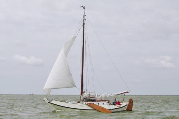 Schokker Vreedenburgh 10,84