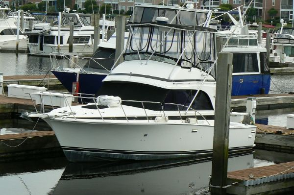 Bertram 33 Flybridge Cruiser Portside Bow