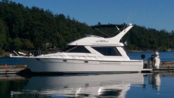 Bayliner 3988 Sister ship