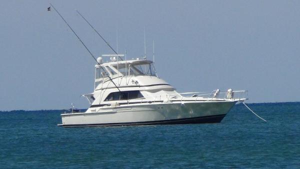 Bertram 50 Convertible Starboard Profile