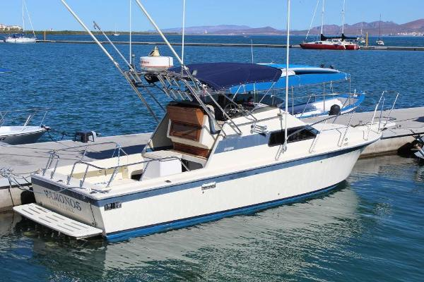 Skipjack Flybridge w/Trailer