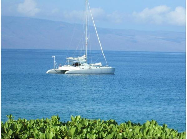 Gills Catamaran California Vince Bartolone Profile