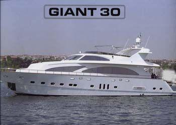 Giant 2006 Photo 1