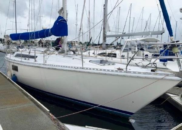 Gib Sea 126 CLEO
