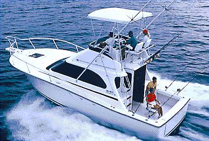 Luhrs Tournament 320 Convertible Manufacturer Provided Image