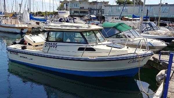Arima Sea Ranger 19