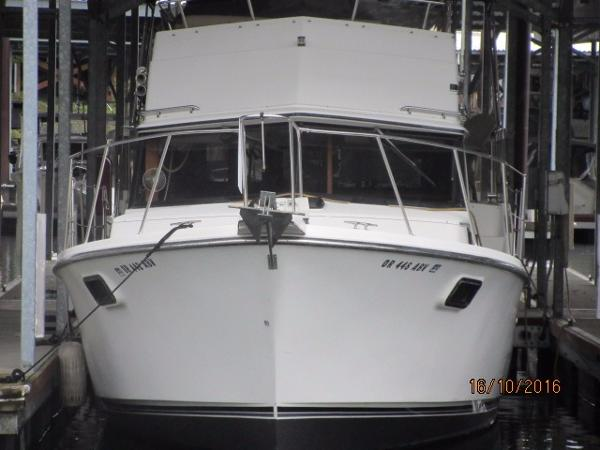Carver 3607 Aft Cabin Motoryacht Bow on.