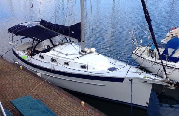 Seaward 23 Eagle