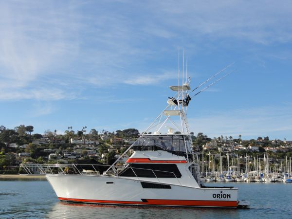 Grizzly Yachts Custom Sportfisher (Cabo 50) Profile
