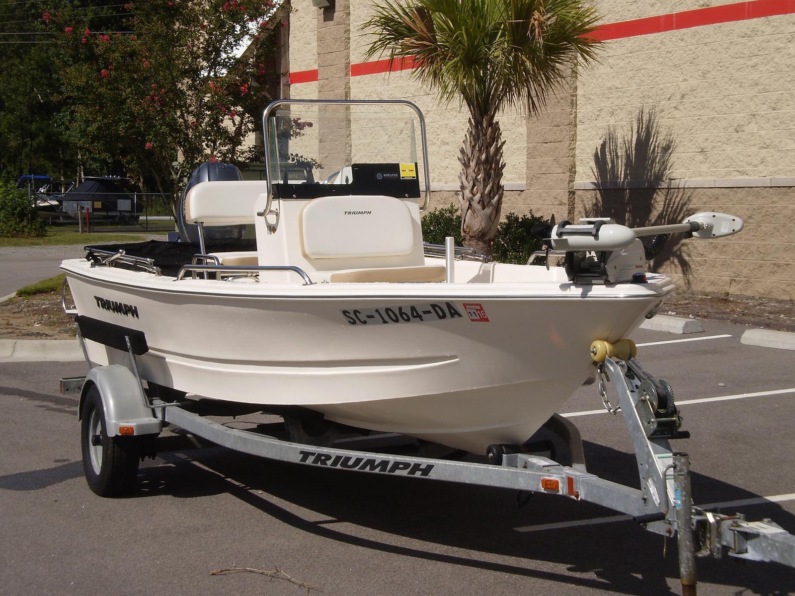 Triumph Fishing Boat 170 CC