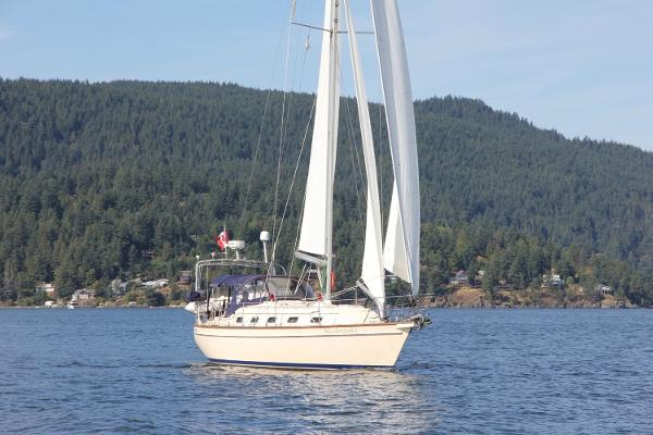 Island Packet 370 Sailing