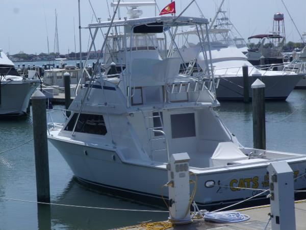 Hatteras Sport Fish Profile